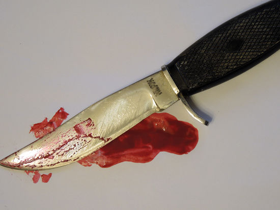 В Подмосковье поймали грабителя, убившего женщину и заставившего ее мужа покончить с собой