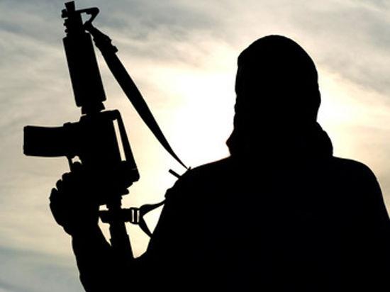Власти Сирии согласны создать переходный орган после ликвидации террористов