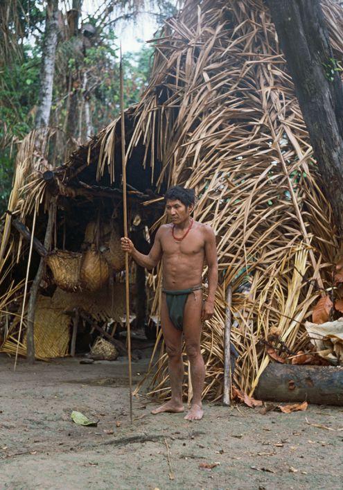 golie-indeytsi-amazonii