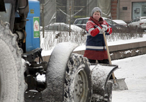 Москве не хватает дворников, водителей и полицейских