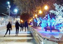 В парке Горького откроется поп-арт каток