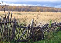 Правительство Московской области намерено затри года собрать иобработать всесельхозземли