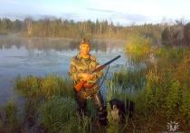 В Подмосковье охотник покончил с собой на могиле застреленной им собаки
