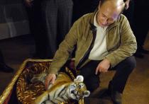 Любимые животные Путина пополнили Московский зоопарк