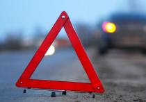 В Челябинске пожилые супруги попали под авто: мужчина погиб