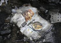 Авиаэксперт удивлен временем, указанным на фото атаки на малазийский «Боинг»