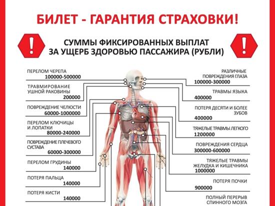 Продать органы человека небольшой