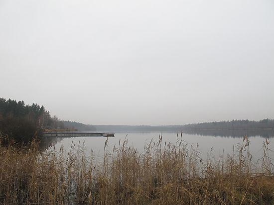 Заповедник «Озера Долгое, Круглое, Нерское» захватили застройщики