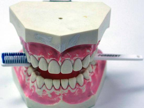 Ученые научили зубы восстанавливаться самостоятельно