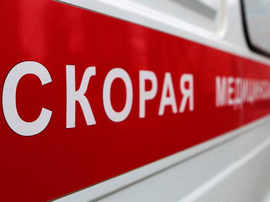 Смерть Артёма Чечикова в Шереметьево: диспетчер не вызвал вовремя реанимацию