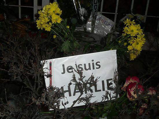 Посол Франции в РФ – о терактах в Париже: «Террористы потерпели поражение»