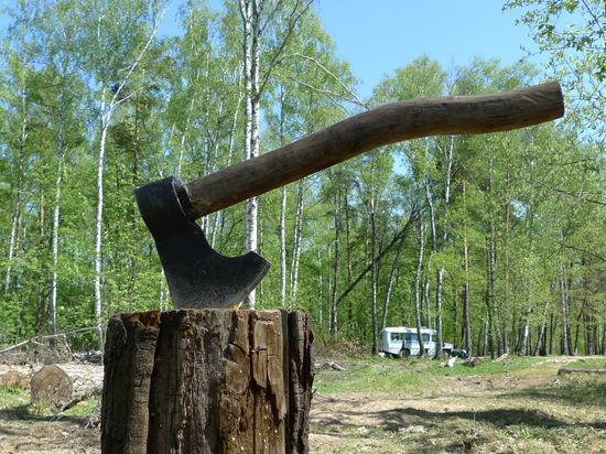 В Воронцовском парке один человек убит и один ранен после нашествия людей с топорами  в капюшонах