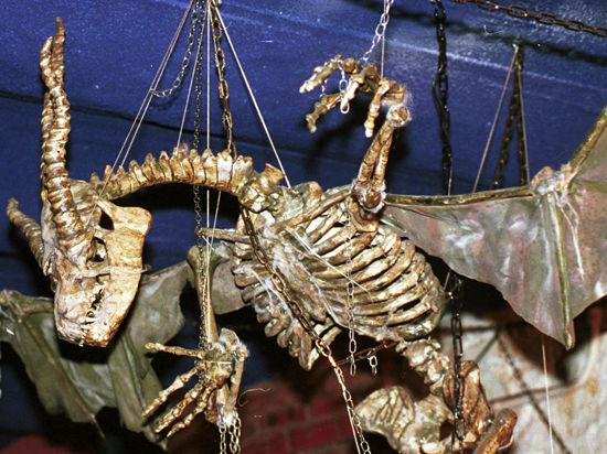 В Кузбассе найден целиком сохранившийся скелет динозавра мезозойской эры