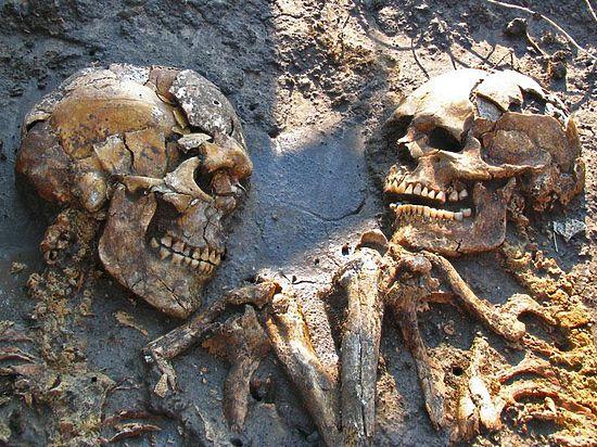 Научкор «МК» стал инициатором первого в России исследования генома древнего человека