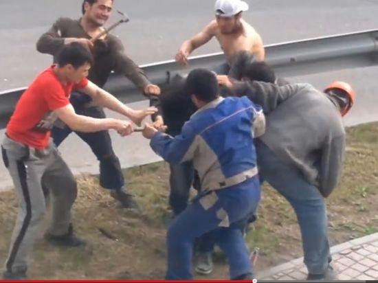 180 мигрантов депортируют после побоища на молотках в «Москва-Сити»