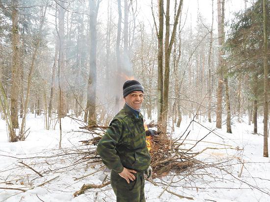 В Красногорске приватизировали 30 га векового леса за 3 процента от его реальной стоимости