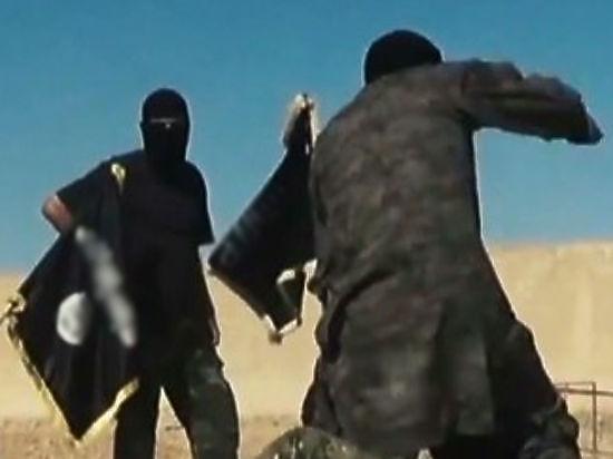 """""""Исламское государство"""" прирастает Россией: Бортников назвал количество граждан РФ, воюющих в Ираке"""