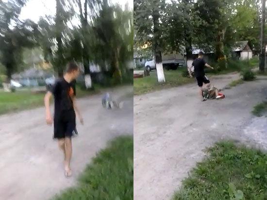 Подростков разыскивают через соцсети: избили пенсионерку и выложили видео в интернет