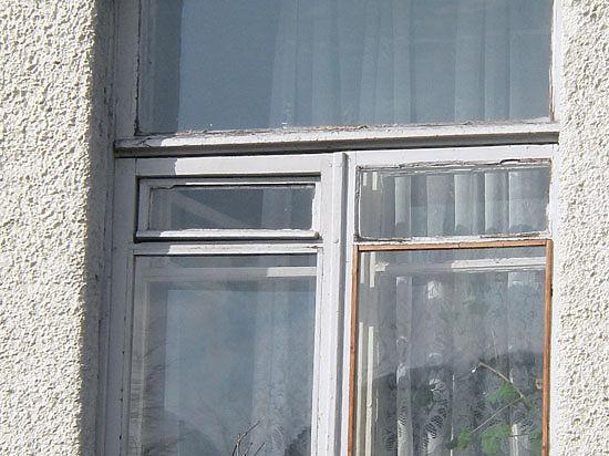 В Москве школьник выбросился из окна, когда ему запретили завести морскую свинку