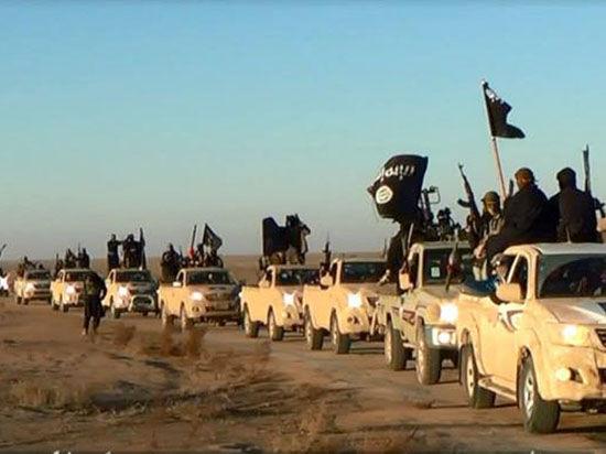 Международную операцию против «Исламского государства» возглавил американский генерал в отставке
