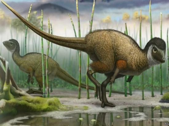 В Забайкалье найдены останки мелких пернатых динозавров юрского периода