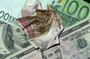 Как нынешняя финансовая ситуация скажется на российском рубле и что делать дальше?